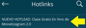 Hotlead Monetizagram